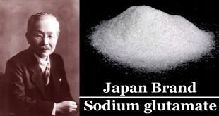【Japan Brand×グルタミン酸ナトリウム/味の素】甘酸塩苦に次ぐ第五の味覚うま味調味料を開発